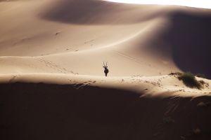 Namibia_010.jpg