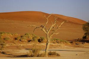 Namibia_011.jpg