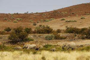 Namibia_012.jpg