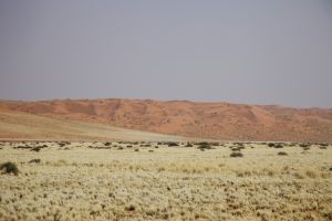 Namibia_024.jpg