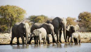 Namibia_028.jpg